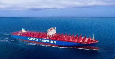 海运运输鉴定证书